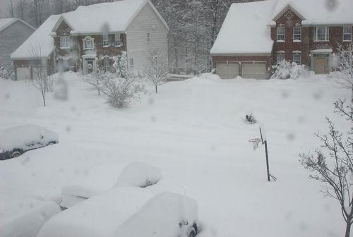 Blizzard 2010 005