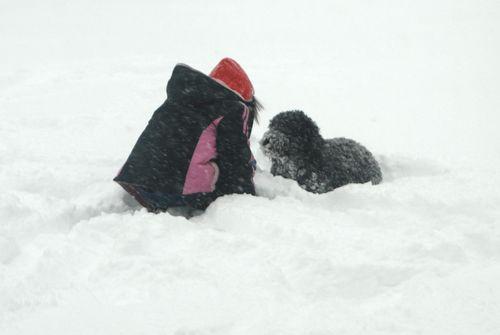 Snow 098
