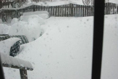 Blizzard 2010 003