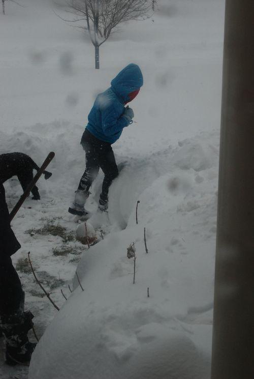 Blizzard 2010 012