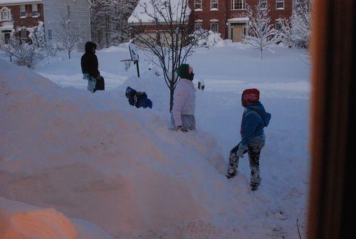 Blizzard 2010 022